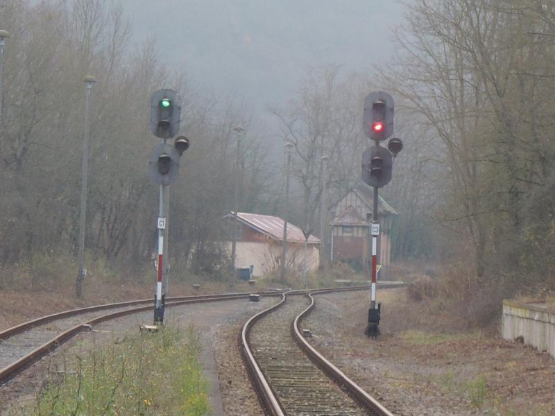 EZMG-Signale in Nebra