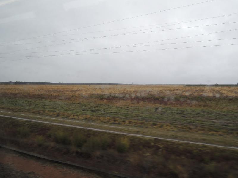 Landschaft im Département Landes